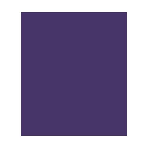 R2-D2 BIM